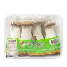 online-grocery-vegetables-store-london-windsor-toronto-yesgo-ca-King-Oyster-Mushrooms