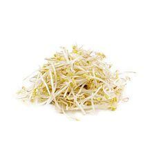 online-grocery-vegetables-store-london-windsor-toronto-yesgo-ca-Sprouts